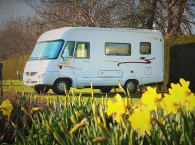 Motorhome with daffodils on an electric hook-up pitch in early spring at Tyn Cornel Campsite and Caravan Park