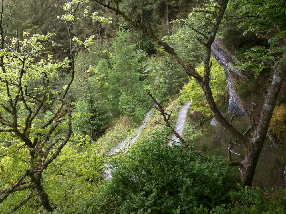 Penmachno mountain bike trail, atmospheric, forest switchbacks, Snowdonia